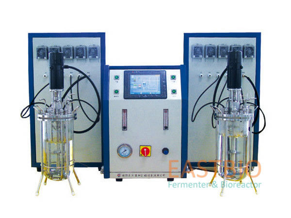 Mechanical Autoclavable Bioreactors Stirred Glass Fermenter Lab Scale